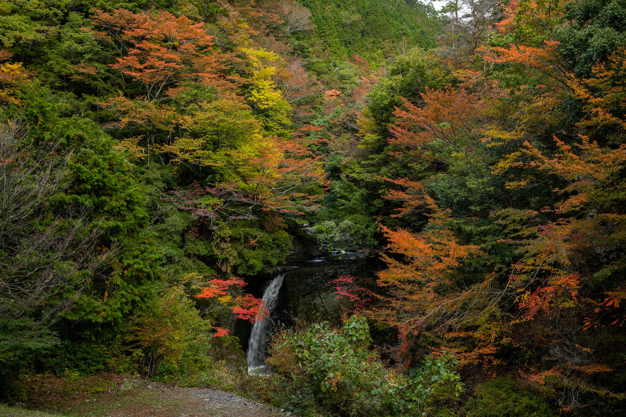 20710 秋におすすめ!紅葉の高野大滝と龍神スカイラインへバイクツーリング旅!