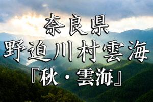 6356ad87808ac0210bae4d060b594039-300x200 野迫川秋-京都ブログアイキャッチ用