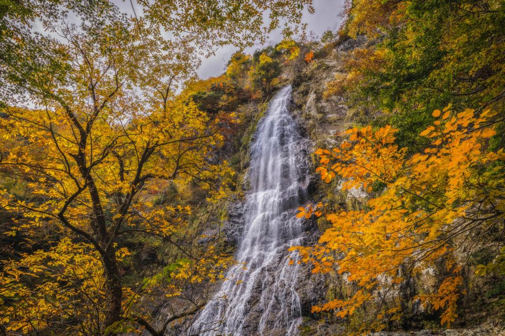 ADS8242-1024x682 落差98メートル!兵庫県一の落差を誇る紅葉の天滝へツーリング旅!