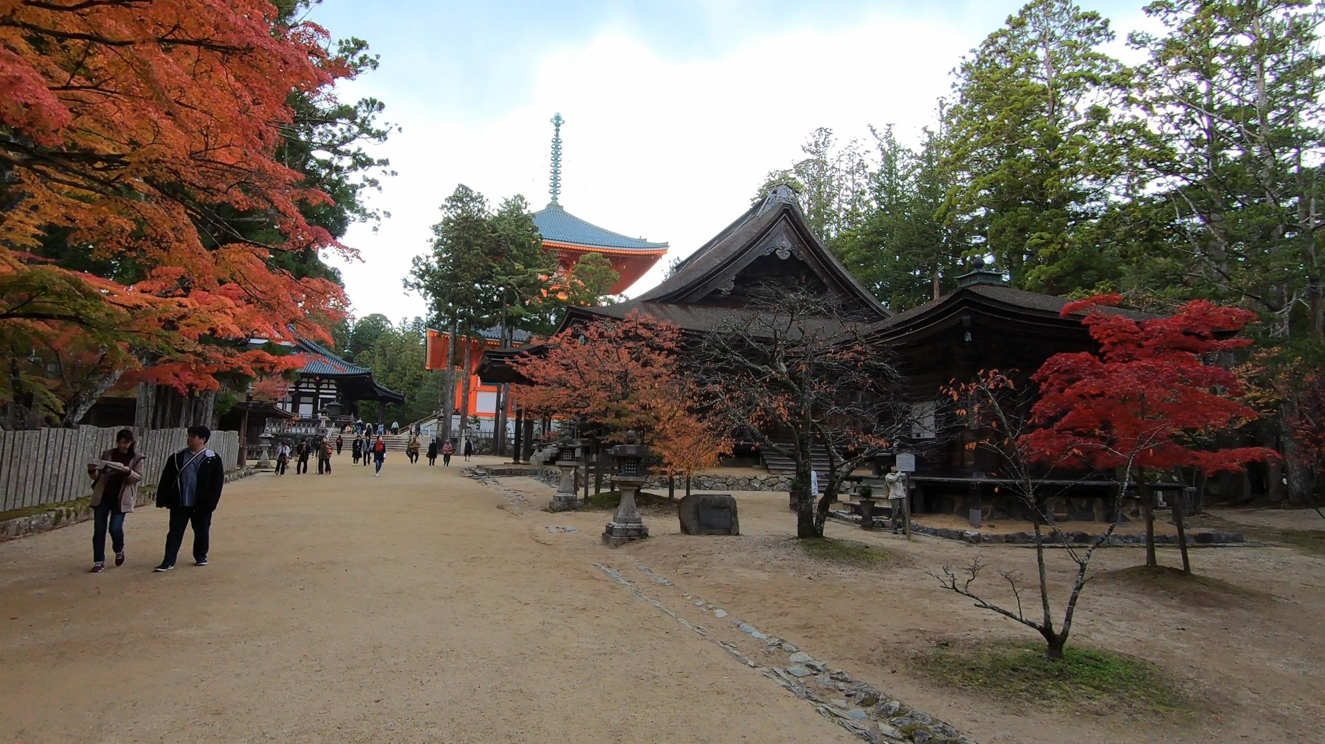 GH011850 関西でいち早く紅葉に染まる高野山へカメラ旅!