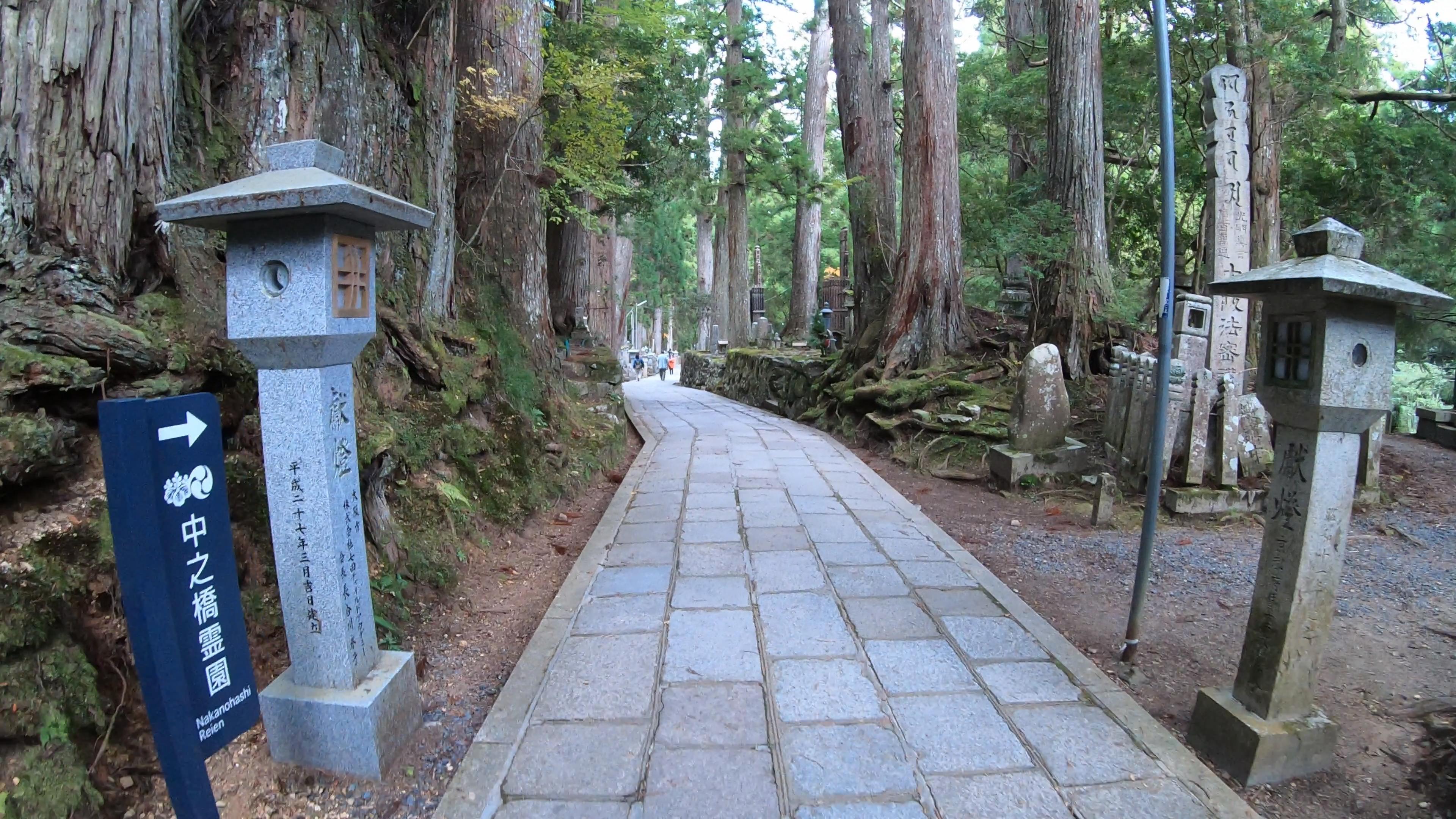 GH011863 関西でいち早く紅葉に染まる高野山へカメラ旅!