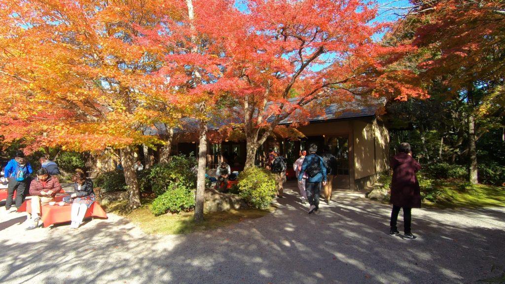 GH012029-1024x576 京都 紅葉の嵐山カメラ&観光おすすめの散策スポット ( 2019年 京都の秋、嵐山の綺麗な紅葉景色が見れる写真スポット・アクセス情報や交通手段など!)