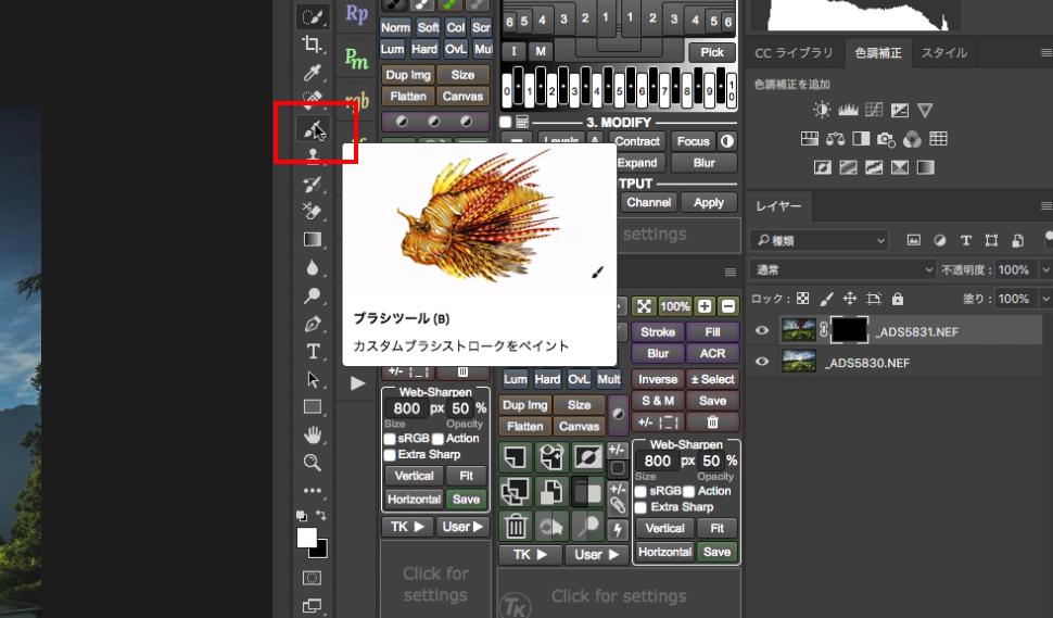 5edb503d09970126f0b6ef66971c3f7d Photoshop(フォトショップ)を使って写真の太陽光やゴースト・レンズフレアを消すレタッチテクニックを解説!!   [ゴースト・フレアの除去]