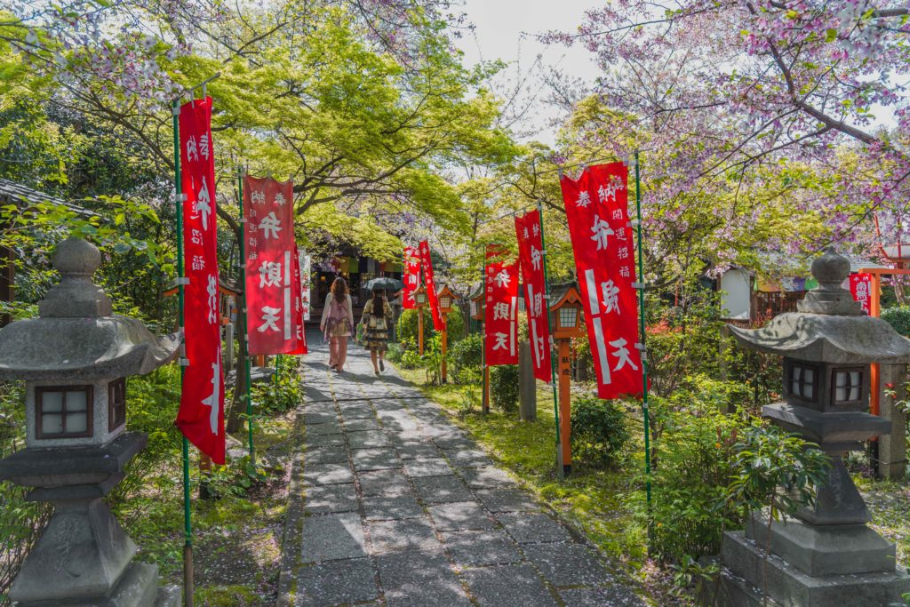 DSC0392-1024x683 京都 - 長建寺 ( 京都 春 桜 写真スポット)