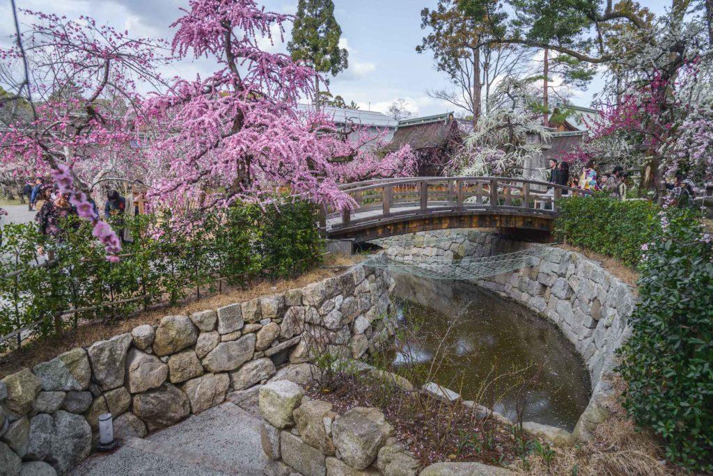 DSC_2370-1024x684 京都府 北野天満宮 Kitano Tenmangu (2020年 京都の春におすすめ梅苑・梅林スポット! 撮影した写真の紹介、ライトアップ・アクセス情報や交通手段・駐車場情報などまとめ)