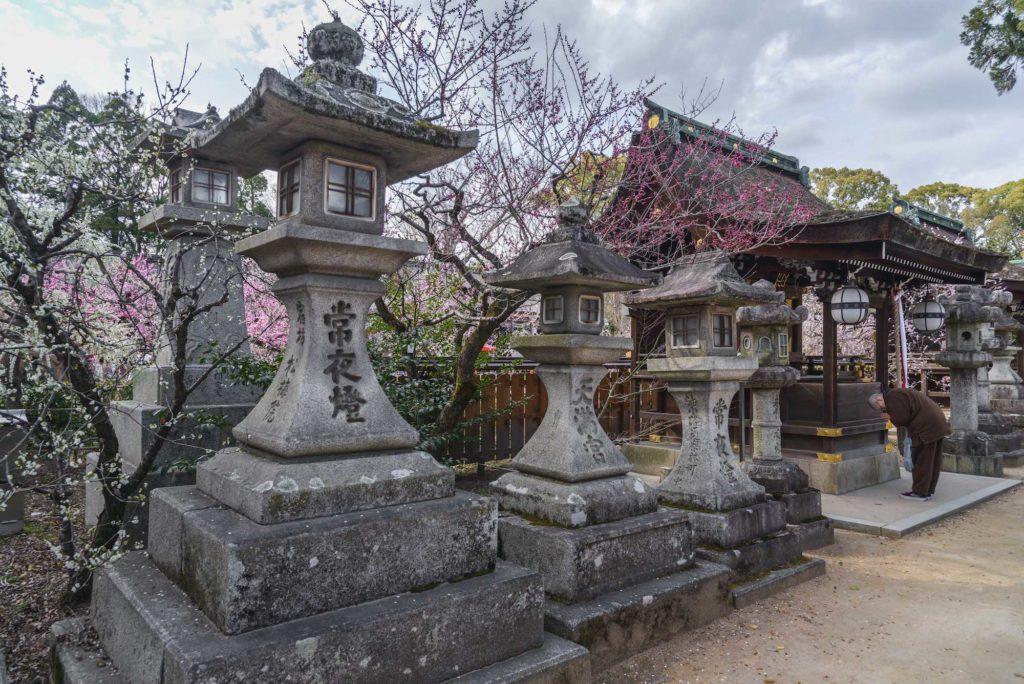 DSC_2373-1024x684 京都府 北野天満宮 Kitano Tenmangu (2020年 京都の春におすすめ梅苑・梅林スポット! 撮影した写真の紹介、ライトアップ・アクセス情報や交通手段・駐車場情報などまとめ)