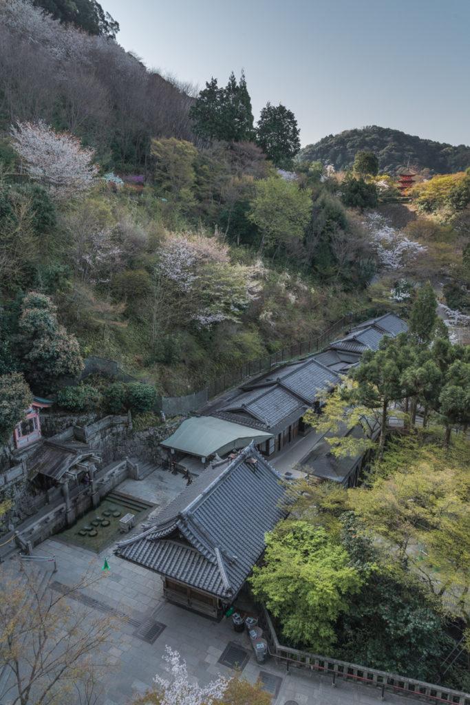 DSC_4698-683x1024 京都 - 清水寺 ( 京都 春 桜 写真スポット)