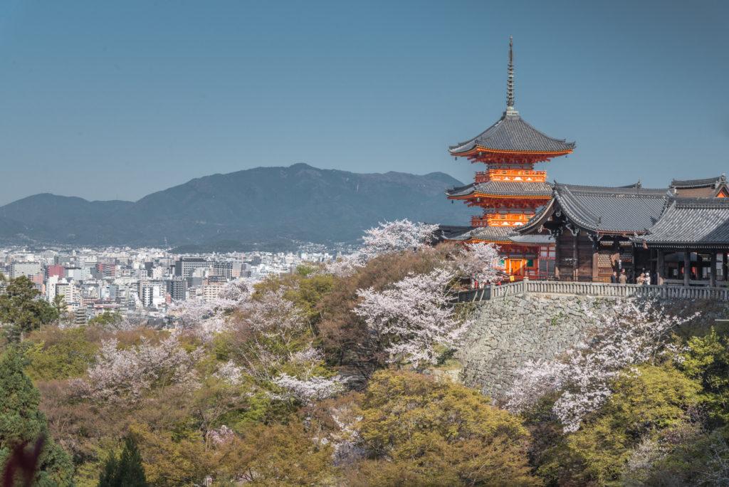 DSC_4724-1024x684 京都 - 清水寺 ( 京都 春 桜 写真スポット)