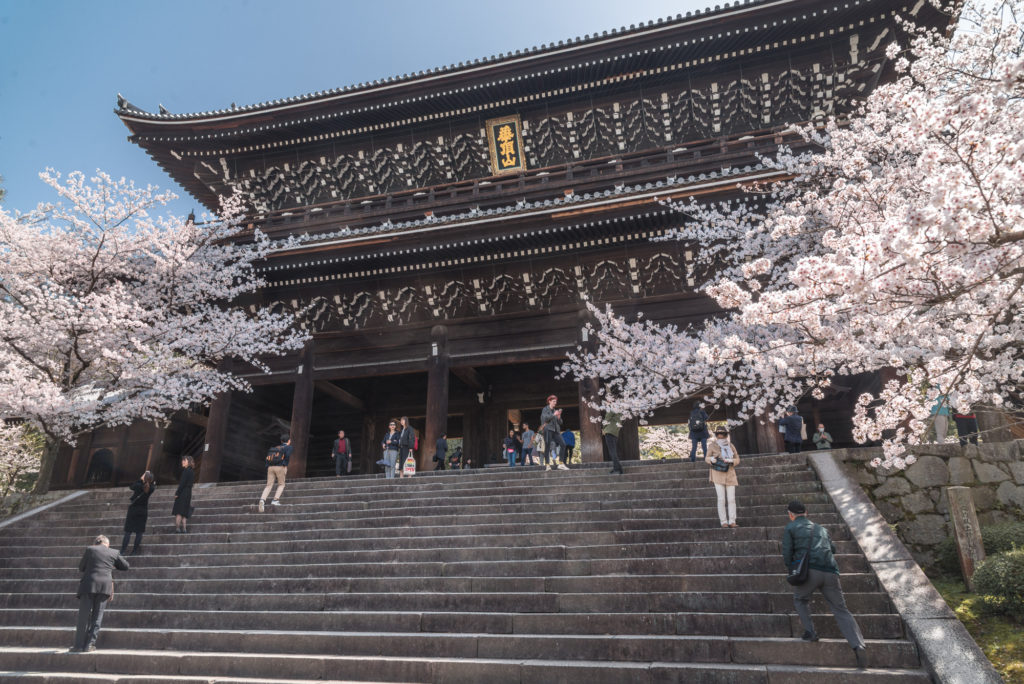DSC_4886-1024x684 京都 - 知恩院 ( 京都 春 桜 写真スポット)