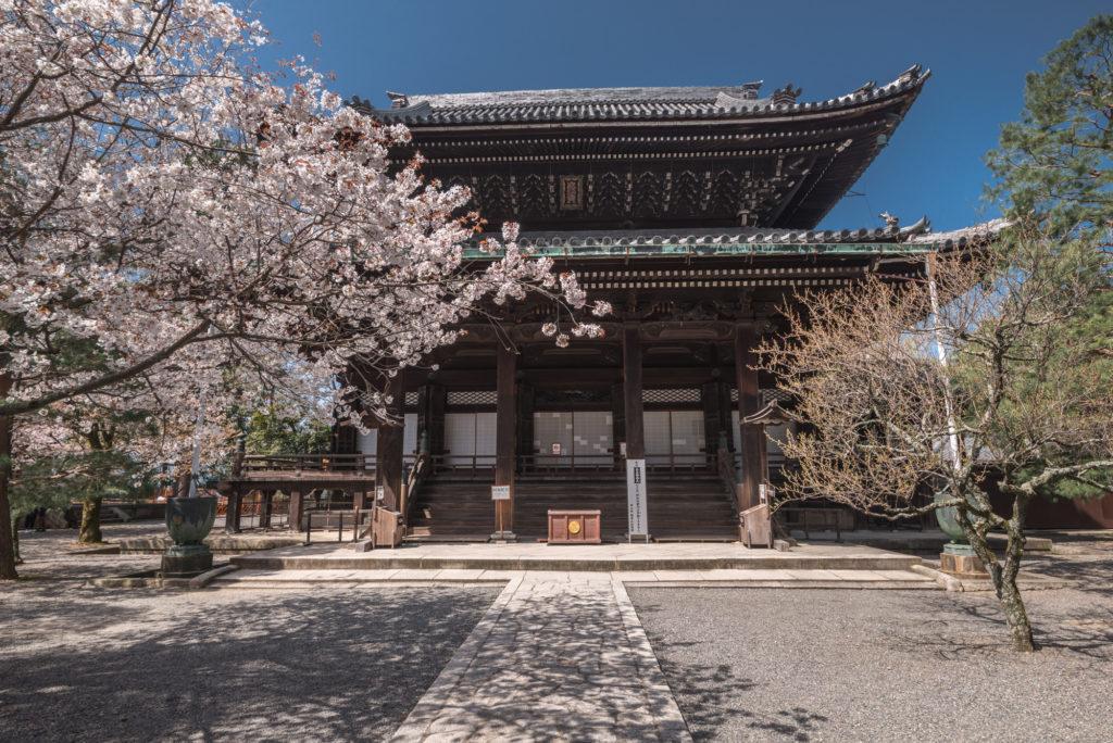 DSC_4913-1024x684 京都 - 知恩院 ( 京都 春 桜 写真スポット)