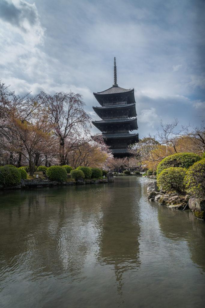 DSC01854-683x1024 京都 - 東寺 ( 京都 春 桜 写真スポット)