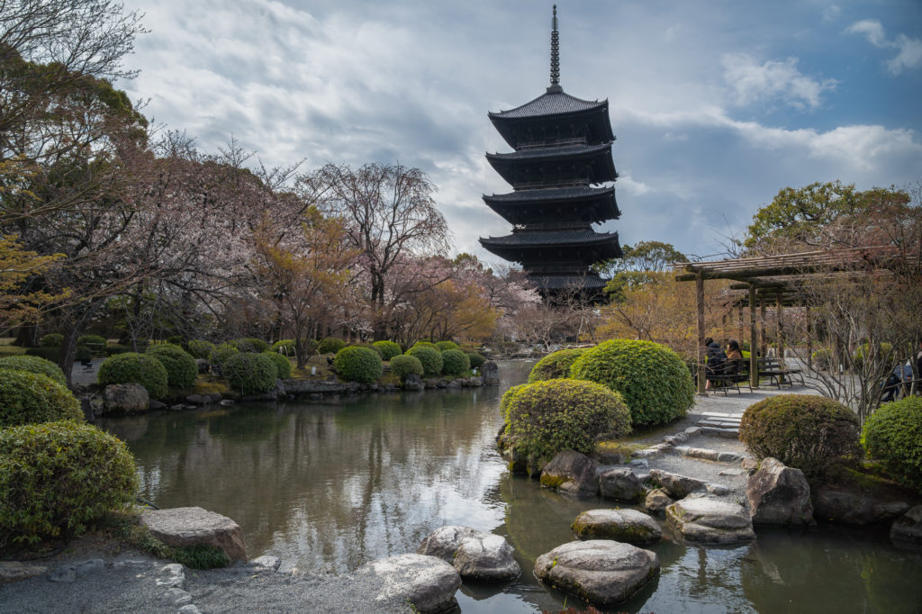 DSC01872-1024x682 京都 - 東寺 ( 京都 春 桜 写真スポット)