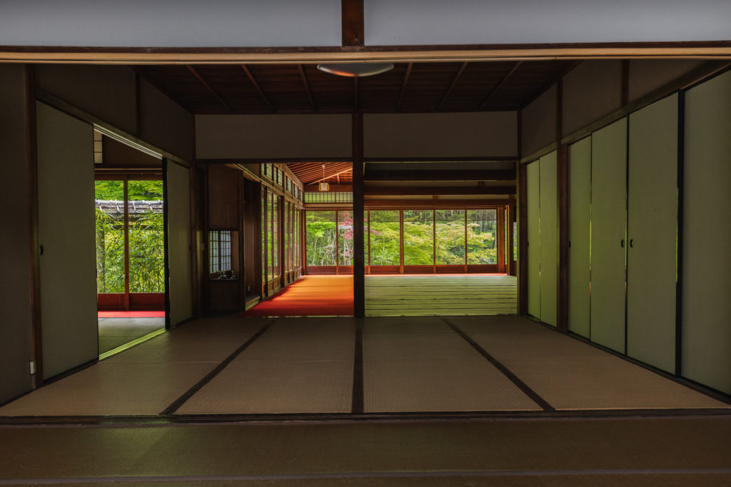 DSC0600-1024x682 京都  天授庵 ( 京都 夏 新緑 秋 紅葉 写真スポット)