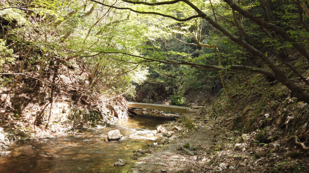 89fa56db6a8ef8a3205293f4020482e6-1024x575 奈良県 済浄坊の滝 ( 奈良 夏 新緑  写真スポット)