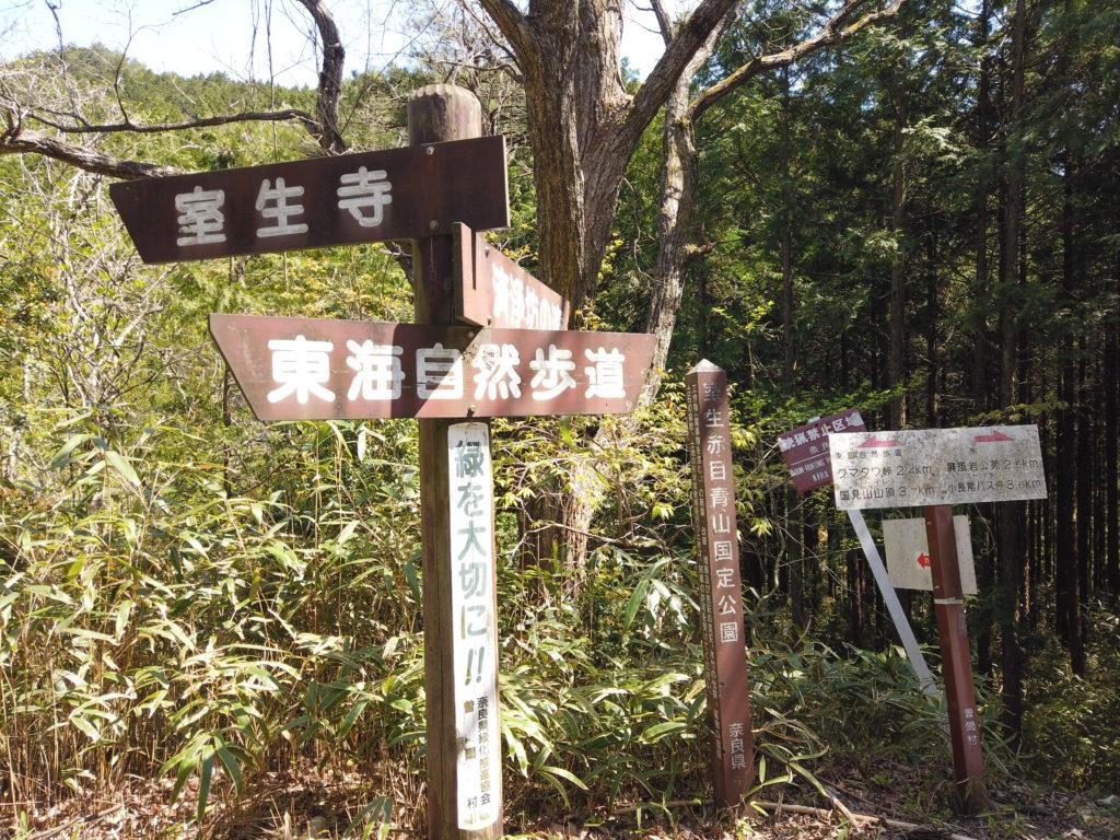 DJI_0225-1024x768 奈良県 済浄坊の滝 ( 奈良 夏 新緑  写真スポット)