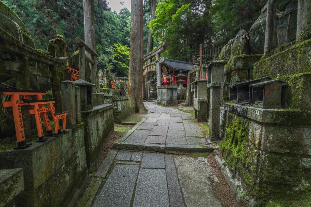 DSC0022-1024x682 京都  伏見稲荷大社(京都の夏、新緑の時期におすすめスポット!写真の紹介やアクセス情報やなど)