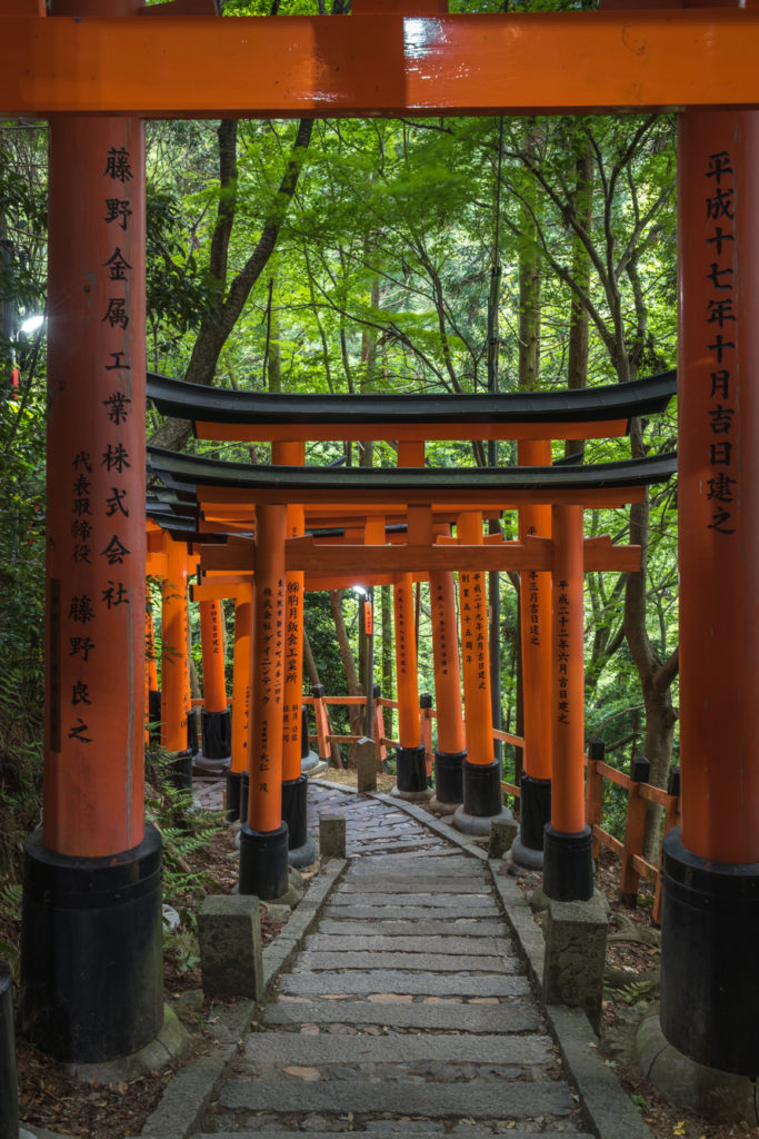 DSC0219-683x1024 京都  伏見稲荷大社(京都の夏、新緑の時期におすすめスポット!写真の紹介やアクセス情報やなど)
