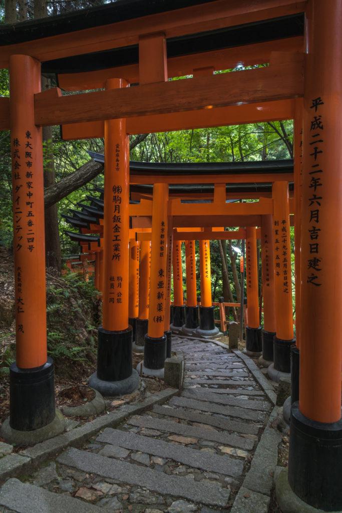 DSC0224-683x1024 京都  伏見稲荷大社(京都の夏、新緑の時期におすすめスポット!写真の紹介やアクセス情報やなど)