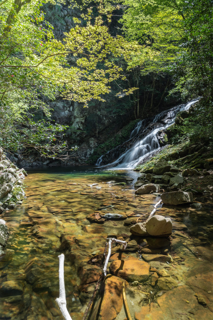 DSC03261-683x1024 奈良県 済浄坊の滝 ( 奈良 夏 新緑  写真スポット)