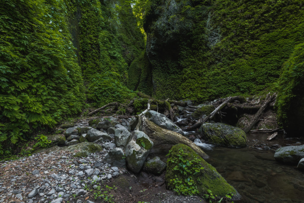DSC2290-1024x682 兵庫県 シワガラの滝 ( 兵庫県の夏、新緑の時期におすすめの絶景滝写真スポット・アクセス情報や撮影ポイントなど!)