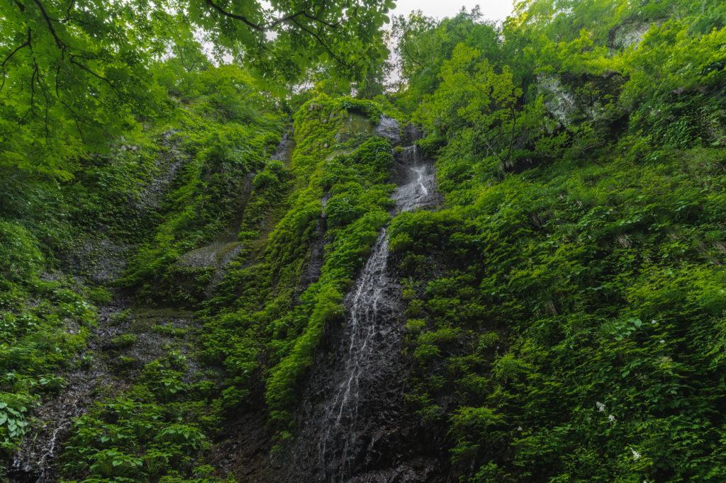 DSC2294-1024x682 兵庫県 シワガラの滝 ( 兵庫県の夏、新緑の時期におすすめの絶景滝写真スポット・アクセス情報や撮影ポイントなど!)