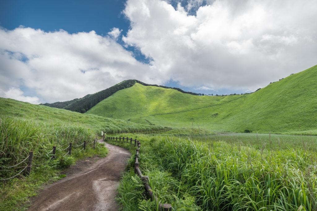 DSC3175-1024x682 奈良  曽爾高原 ( 奈良 夏 写真スポット)