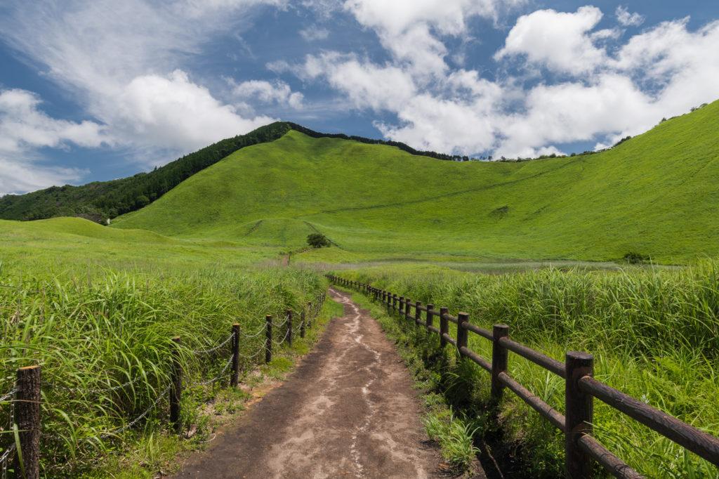 DSC3251-1024x682 奈良  曽爾高原 ( 奈良 夏 写真スポット)
