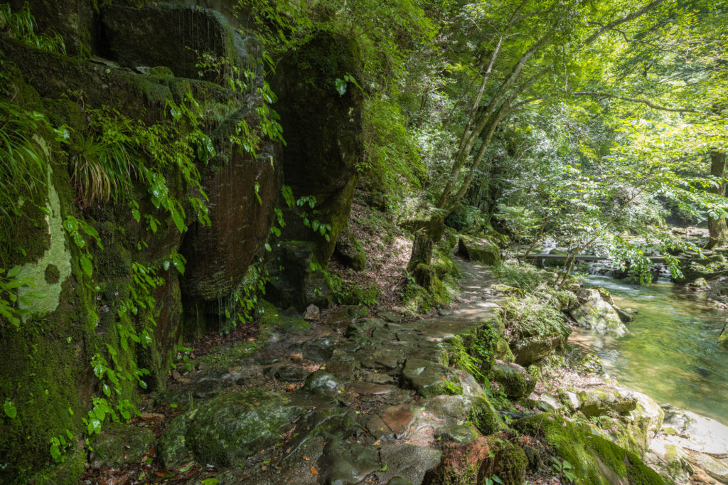 DSC3338-1024x682 三重県 赤目四十八滝( 夏の新緑と秋の紅葉の時期におすすめ!沢山の滝を見れるハイキングスポット! 撮影した写真の紹介、アクセス方法や駐車場、料金などまとめ)