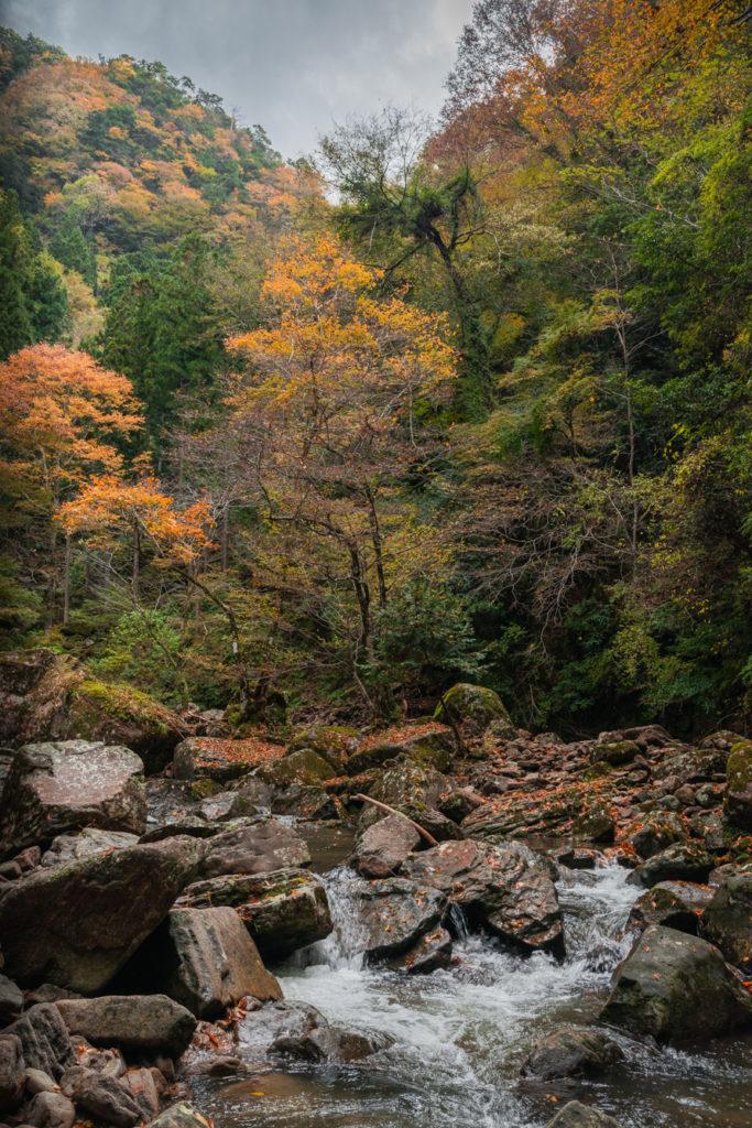 DSC_6905-683x1024 三重県 赤目四十八滝( 夏の新緑と秋の紅葉の時期におすすめ!沢山の滝を見れるハイキングスポット! 撮影した写真の紹介、アクセス方法や駐車場、料金などまとめ)