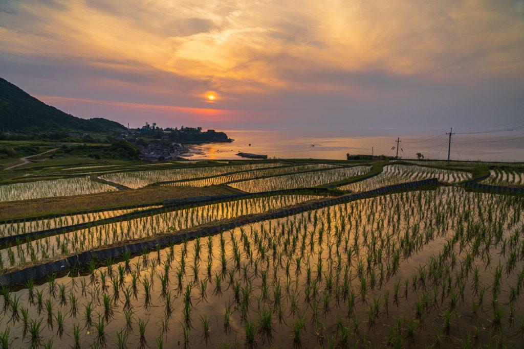 DSC04471-1-1024x683 京都 夏の撮影スポット19選! 新緑の庭園やあじさい、海の景色など京都の夏の景色が満載! 旅行や観光スポット探しにおすすめ!