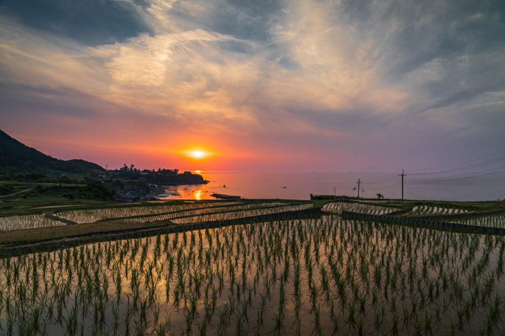 DSC04514-2-1024x682 京都 夏の撮影スポット19選! 新緑の庭園やあじさい、海の景色など京都の夏の景色が満載! 旅行や観光スポット探しにおすすめ!