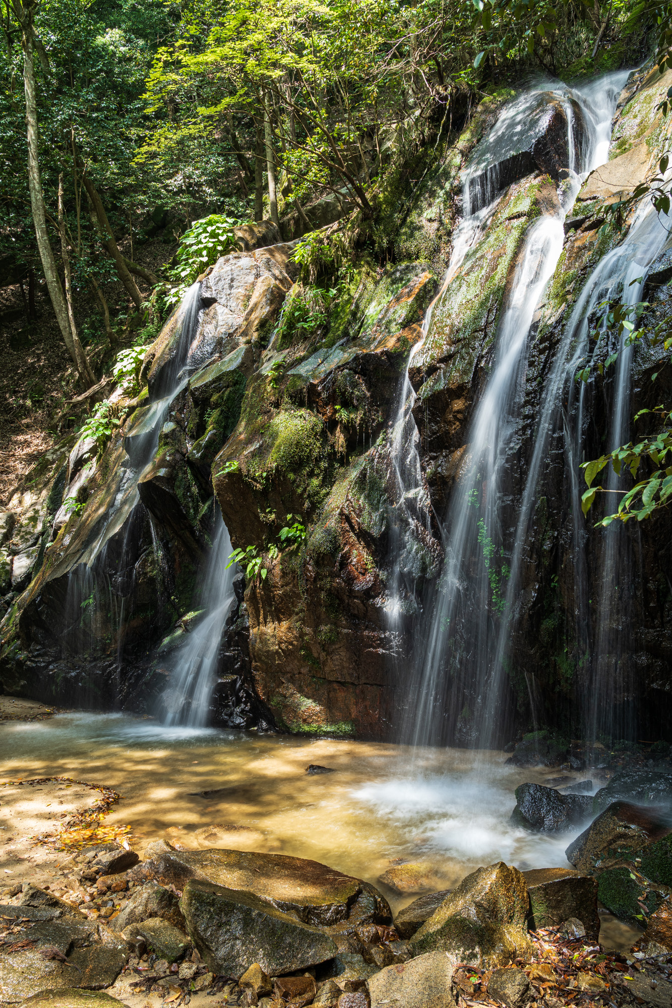 DSC04578-Edit 京都  金引の滝 ( 京都の夏、新緑の時期におすすめの滝写真スポット・アクセス情報や撮影ポイントなど!)