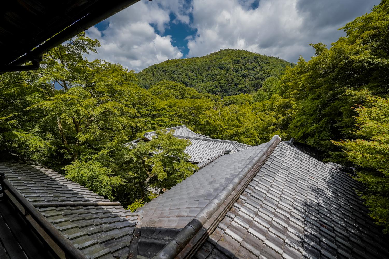 DSC04975 京都  瑠璃光院 ( 京都の夏、新緑のおすすめ写真スポット・アクセス情報や撮影ポイントなど!)