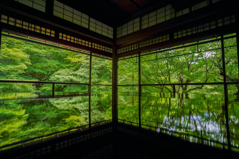 DSC05011 京都  瑠璃光院 ( 京都の夏、新緑のおすすめ写真スポット・アクセス情報や撮影ポイントなど!)