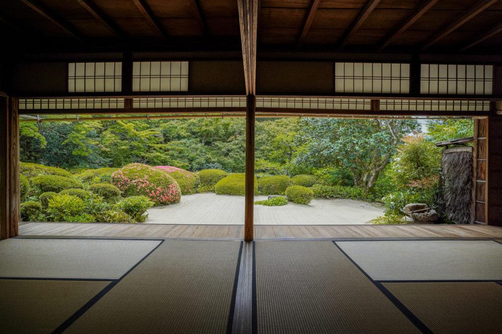 DSC05220-1024x682 京都  詩仙堂 ( 京都の夏、新緑のおすすめ庭園写真スポット・アクセス情報や撮影ポイントなど!)