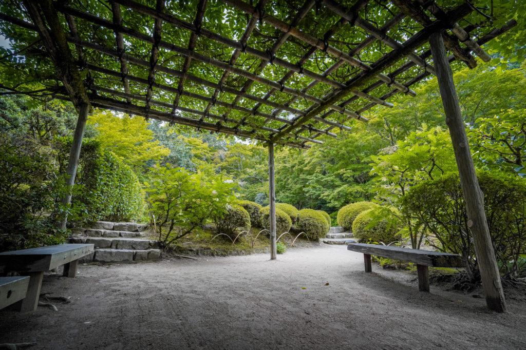 DSC05337-1024x682 京都  詩仙堂 ( 京都の夏、新緑のおすすめ庭園写真スポット・アクセス情報や撮影ポイントなど!)