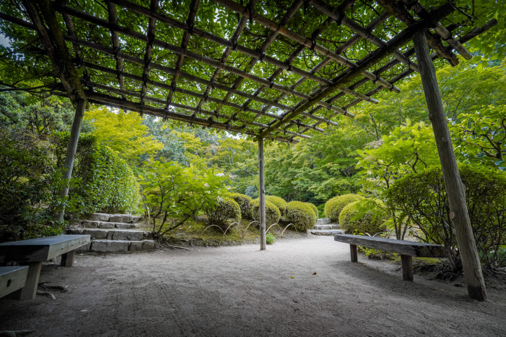 DSC05337-1024x682 京都  詩仙堂(京都の夏、新緑のおすすめ庭園写真スポット!撮影した写真の紹介、アクセス情報や撮影ポイントなど!)