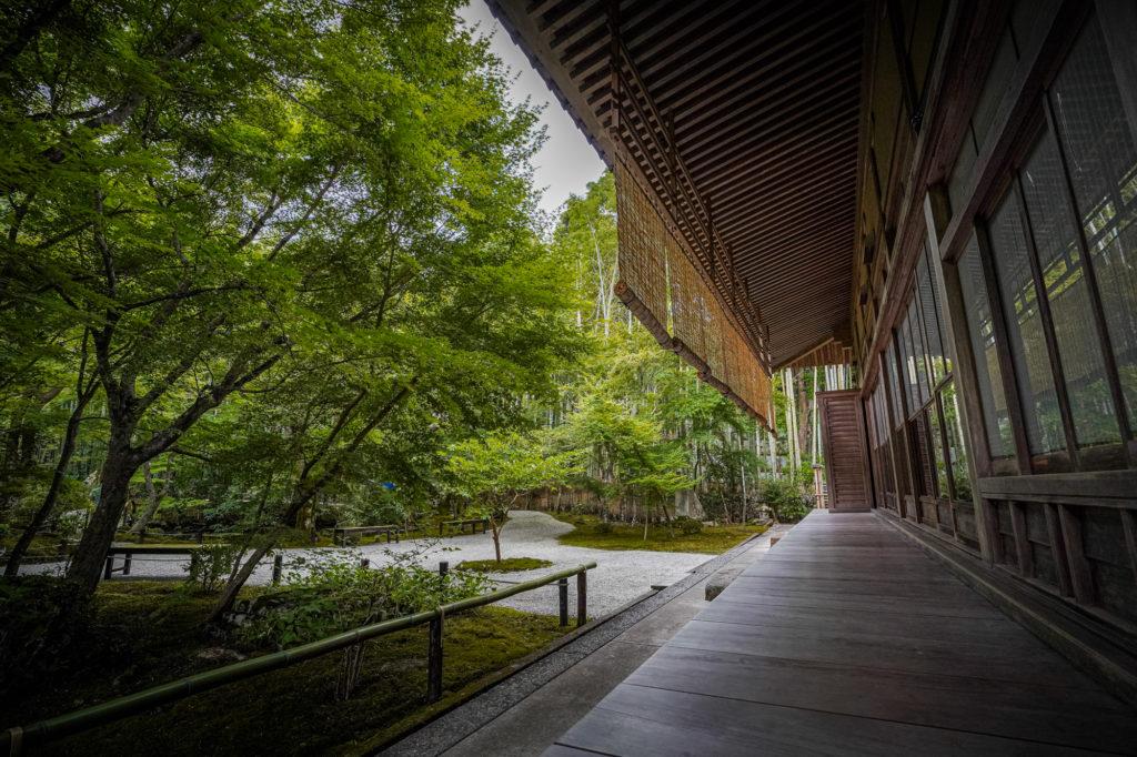 DSC05384-1024x682 京都  圓光寺 ( 京都の夏、新緑のおすすめ庭園写真スポット・アクセス情報や撮影ポイントなど!)