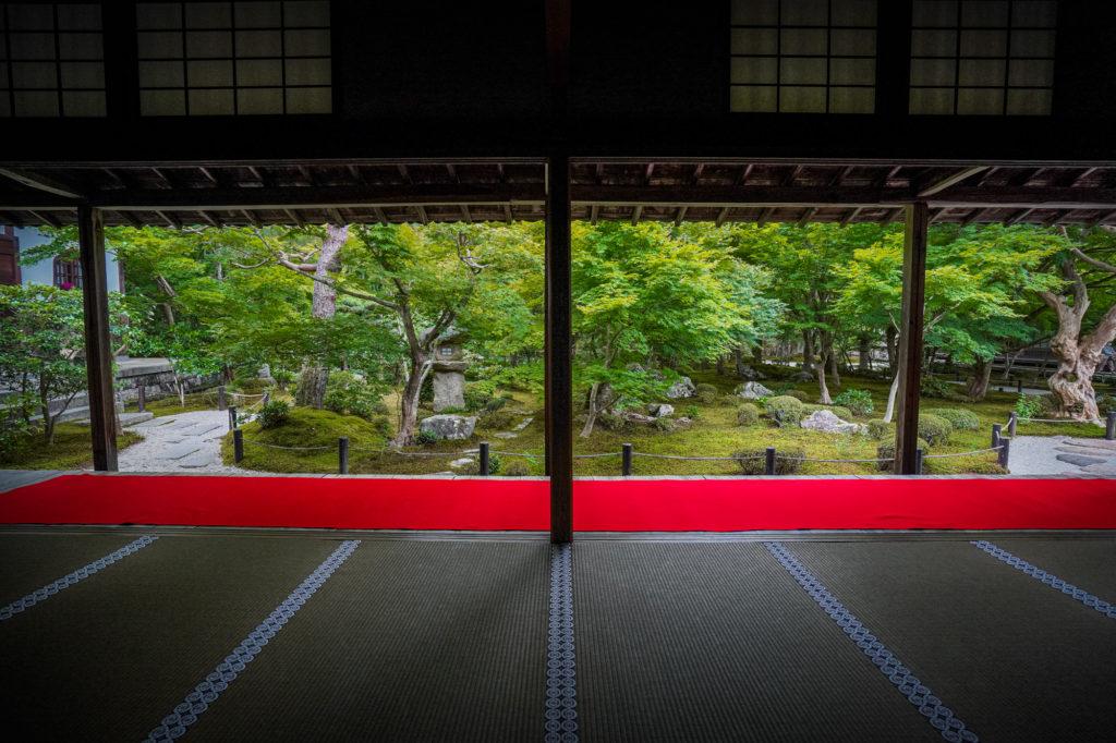 DSC05505-1024x682 京都  圓光寺 ( 京都の夏、新緑のおすすめ庭園写真スポット・アクセス情報や撮影ポイントなど!)