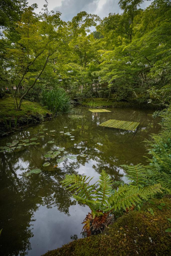 DSC05605-682x1024 京都  圓光寺 ( 京都の夏、新緑のおすすめ庭園写真スポット・アクセス情報や撮影ポイントなど!)