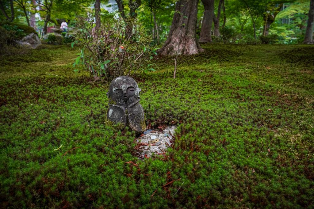 DSC05666-1024x682 京都  圓光寺 ( 京都の夏、新緑のおすすめ庭園写真スポット・アクセス情報や撮影ポイントなど!)