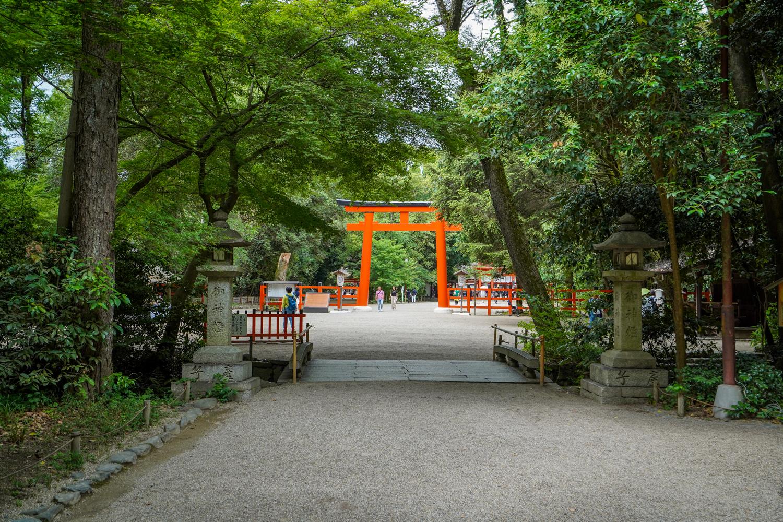 DSC05791 京都  下鴨神社(京都の夏、新緑のおすすめ写真スポット!撮影した写真の紹介、アクセス情報や撮影ポイントなど!)