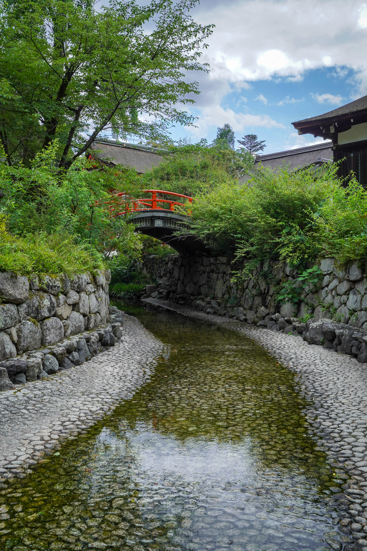 DSC05814 京都  下鴨神社(京都の夏、新緑のおすすめ写真スポット!撮影した写真の紹介、アクセス情報や撮影ポイントなど!)