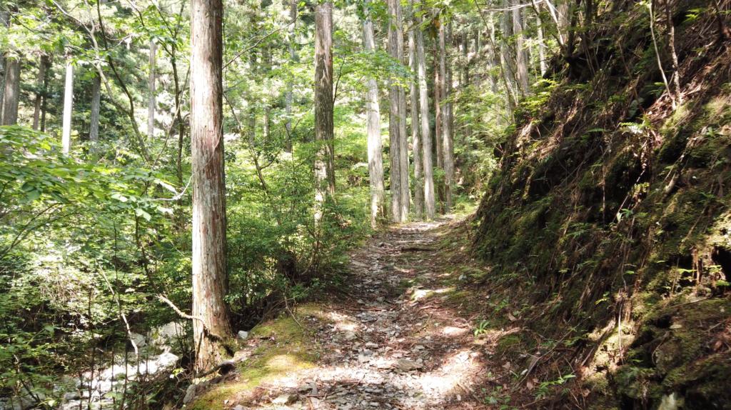 0442a969a48eec3380570758becc9ec7-1024x574 奈良県 和佐羅滝(奈良県の夏、新緑の時期におすすめの滝写真スポット!撮影した写真の紹介、アクセス情報や撮影ポイントなど!)