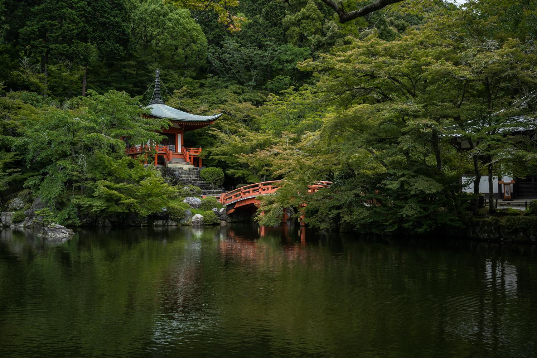DSC07171 京都  醍醐寺(京都の夏、新緑のおすすめ写真スポット!撮影した写真の紹介、アクセス情報や交通手段など)