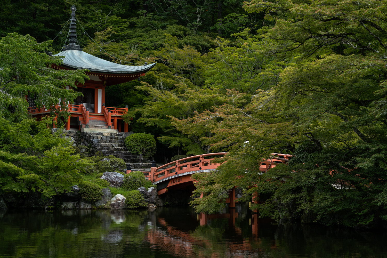 DSC07190-1 京都  醍醐寺(京都の夏、新緑のおすすめ写真スポット!撮影した写真の紹介、アクセス情報や交通手段など)