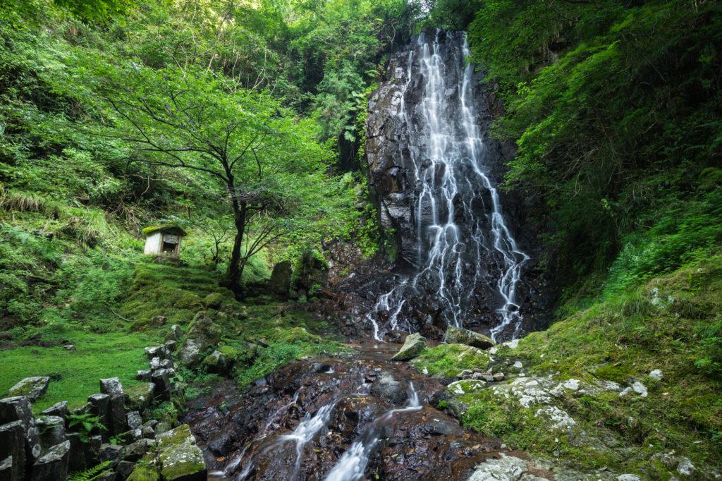 DSC01599-1024x682 京都 夏の撮影スポット19選! 新緑の庭園やあじさい、海の景色など京都の夏の景色が満載! 旅行や観光スポット探しにおすすめ!
