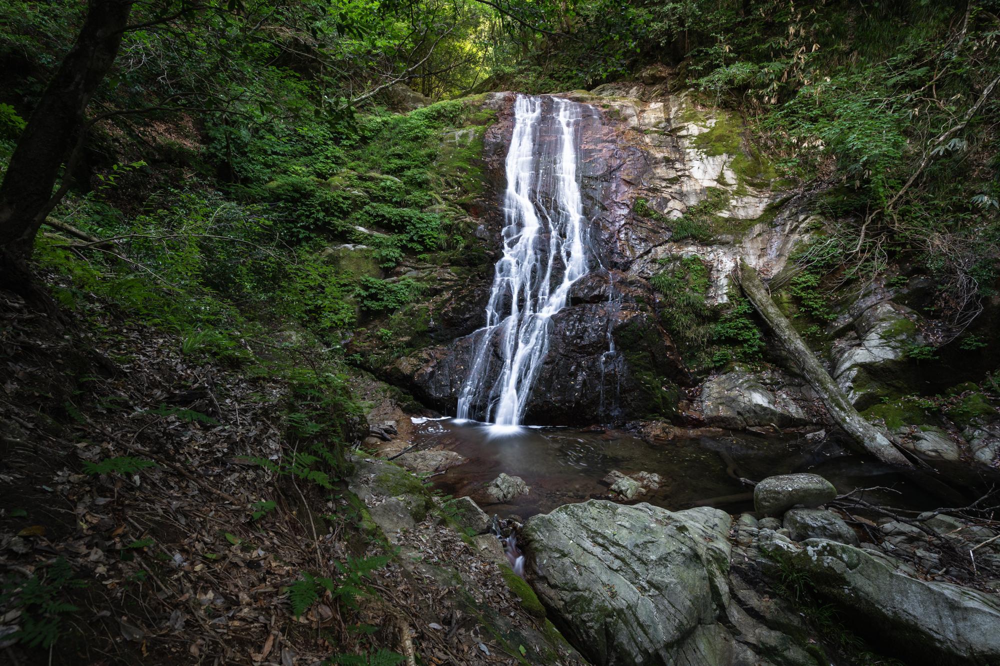 DSC01624 兵庫県   清竜の滝 ( 駐車場から歩いて5分! 関西・近畿・兵庫県の滝スポット! アクセス情報や撮影ポイントなど!)