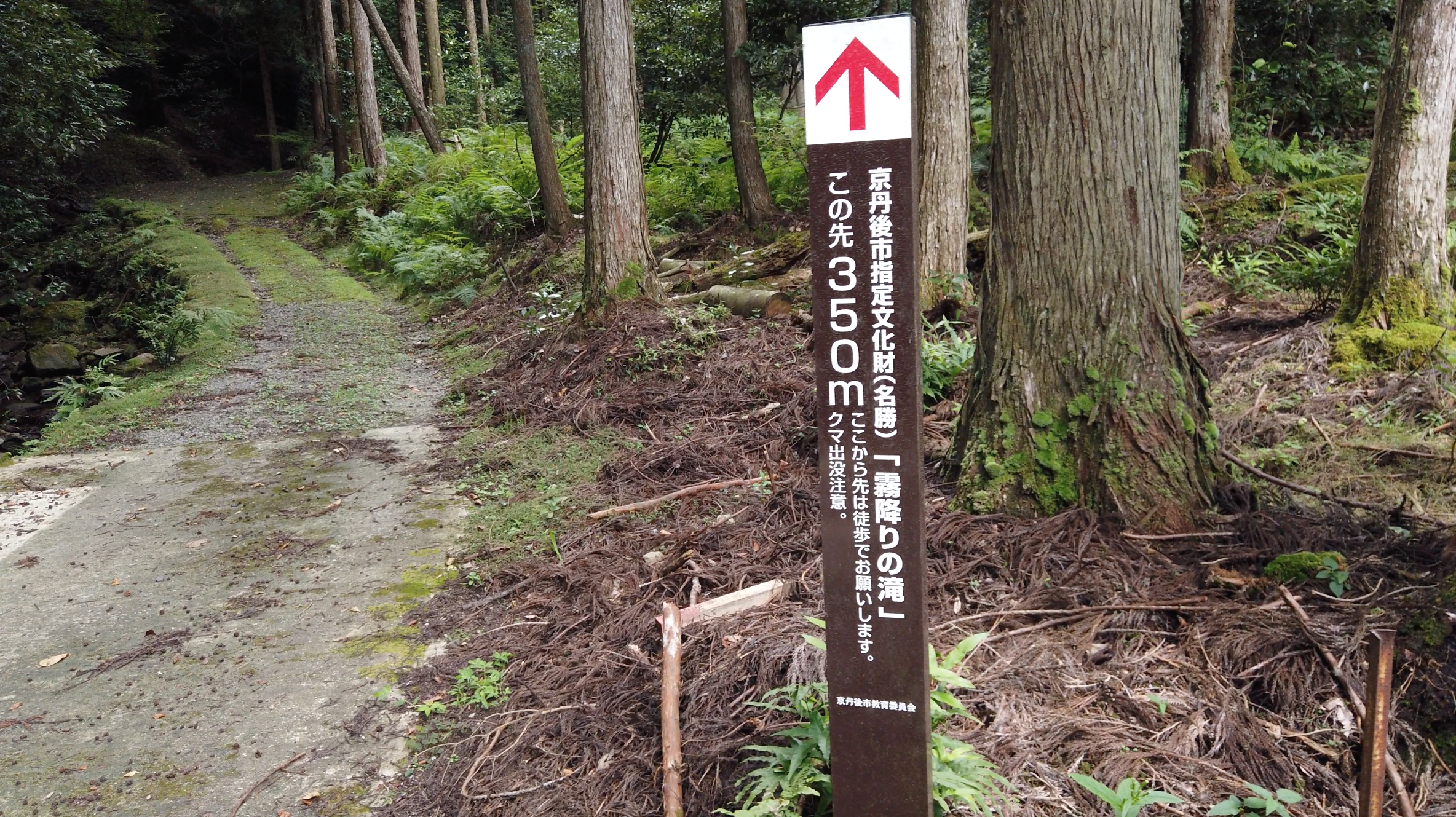 d797d151bc67ba0ee2039e7bb576a60b 京都府    霧降りの滝 ( 京都の丹後半島観光におすすめ! 滝が観れる撮影スポット! アクセス・駐車場情報や撮影ポイントなど!!)