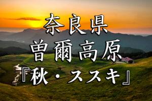 44f4aa7828e9f490b3b25fd430cfb4af-300x200 曽爾秋-京都ブログアイキャッチ用